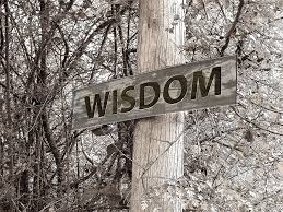 A sign with the word WISDOM on it, nailed to a tree or pole