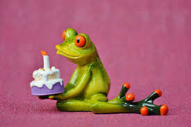 Frog wishing on a birthday cake candle