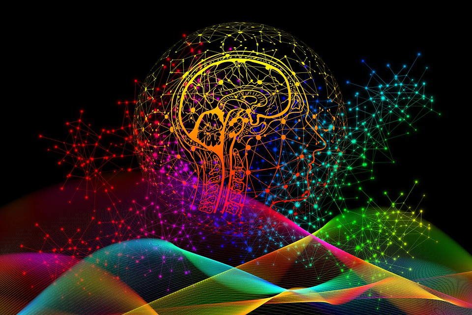 drawing of the brain inside the outline of the head, with all sorts of colors swirling arund like questions and thoughts